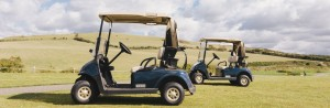 Buggy hire for Visitors